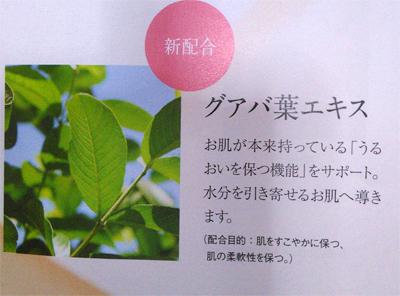 ドモホルンリンクルの基本4点セット保湿液 グアバ葉エキスが新しく加わる
