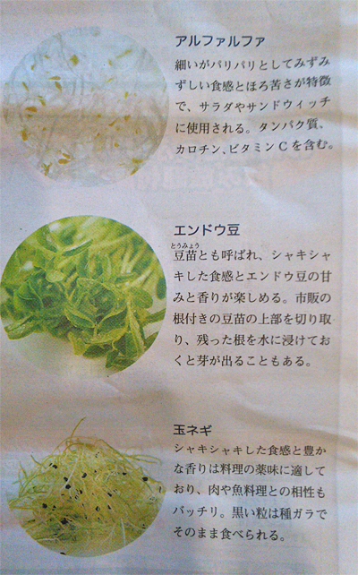 スプラウト野菜「アルファルファ」「エンドウ豆」「玉ねぎ」