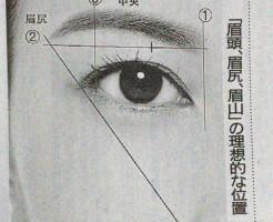 美しい眉の理想的な位置